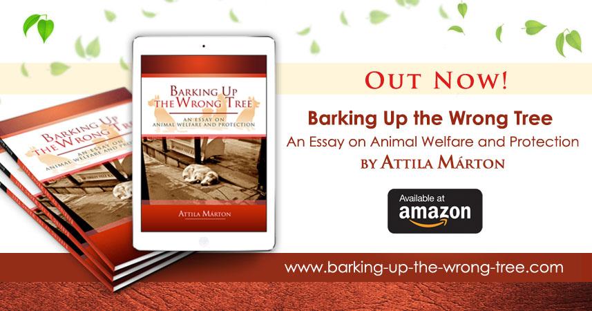 Animal welfare essay